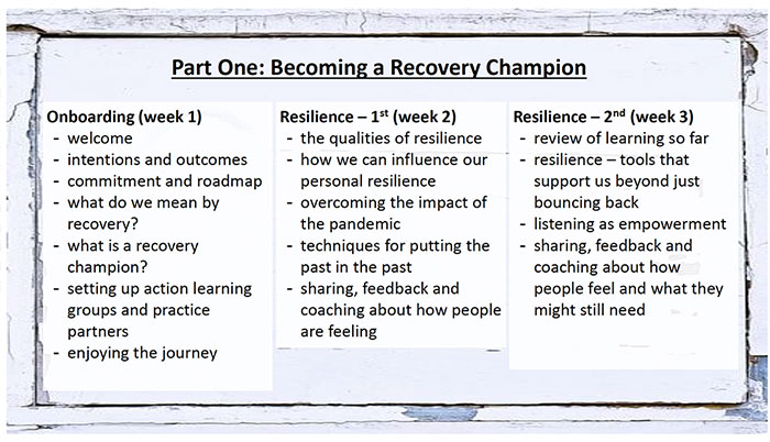 Recovery Champions Brochure 1