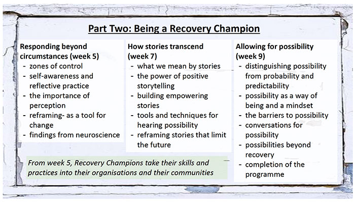 Recovery Champions Brochure 2